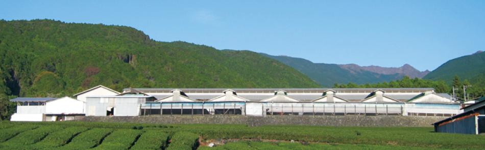 後藤養鶏場の写真